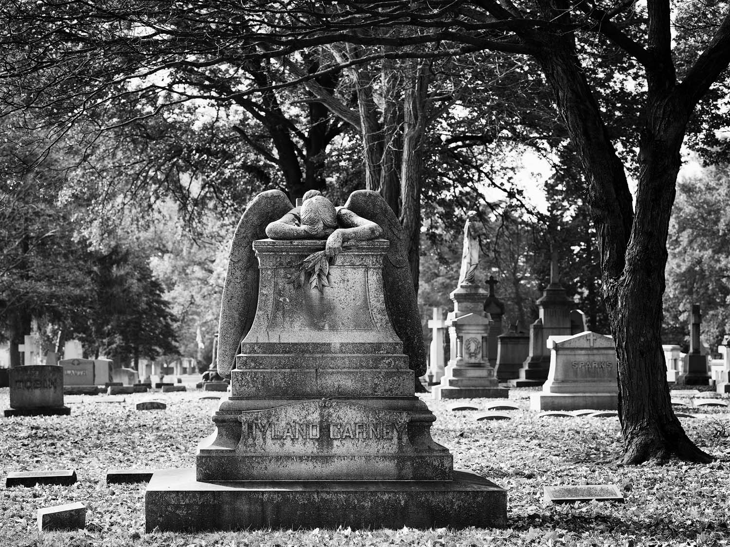 North America, United States of America, Missouri, St. Louis, Calvary Cemetery, architecture, landscape, cemetery, death, photo